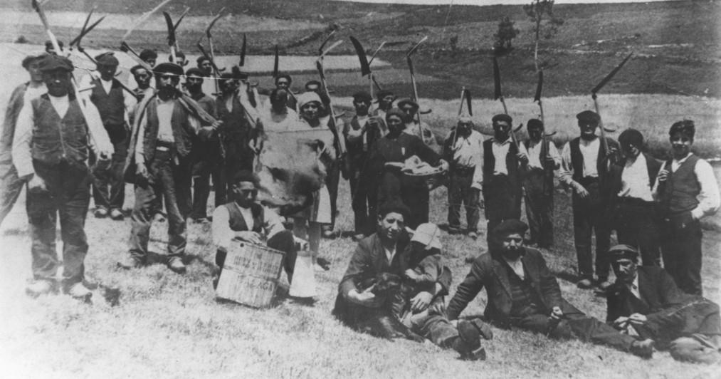 SEGADORES GRANDAS 1950